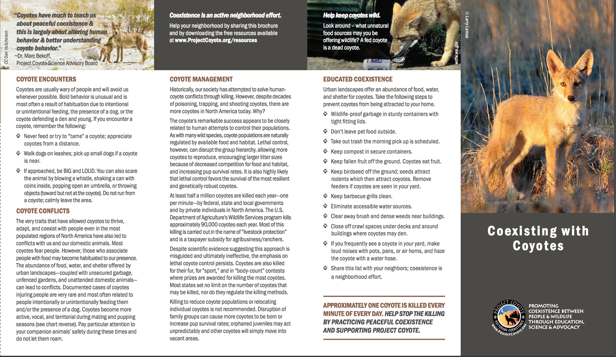 Brochure from Project Coyote