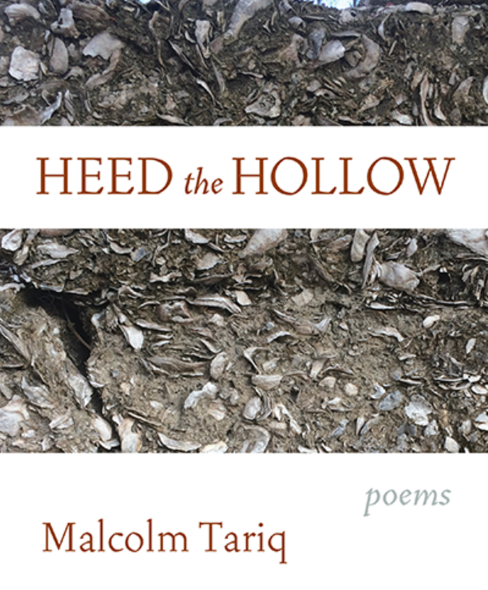 Heed the Hollow (Graywolf Press, 2019)