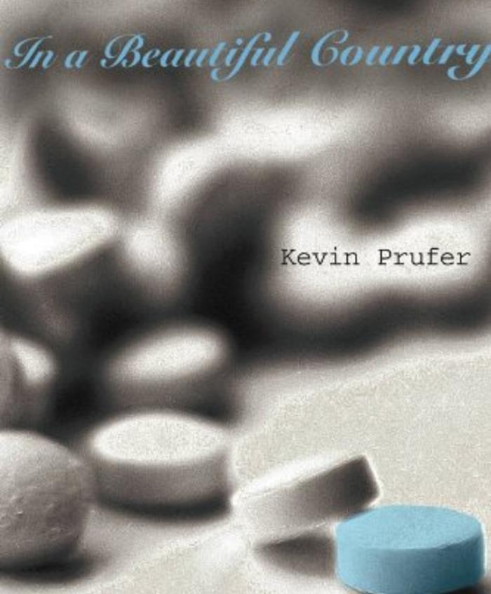 In a Beautiful Country by Kevin Prufer