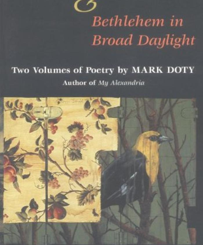 Paragon Park: Turtle, Swan; Bethlehem in Broad Daylight; Early Poems by Mark Doty