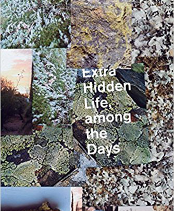 Extra Hidden Life, among the Days (Wesleyan University Press, February 2018)